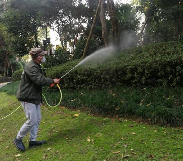 园林绿化白蚁预防施药
